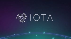 IOTA evaluation and analysis