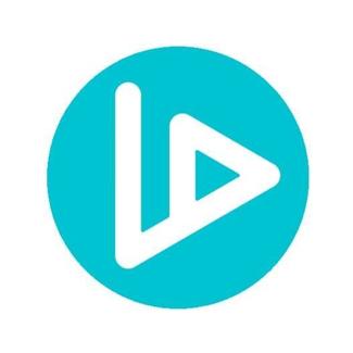 VIDT logo