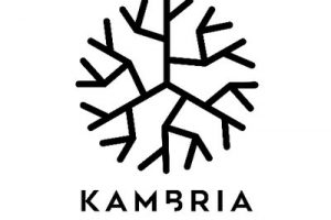 ICO Review: Kambria-A Blockchain-Powered Collaborative Ecosystem for Robotics