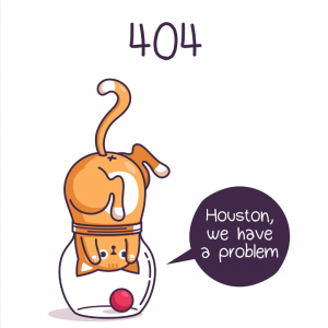404 error Houston we have a problem